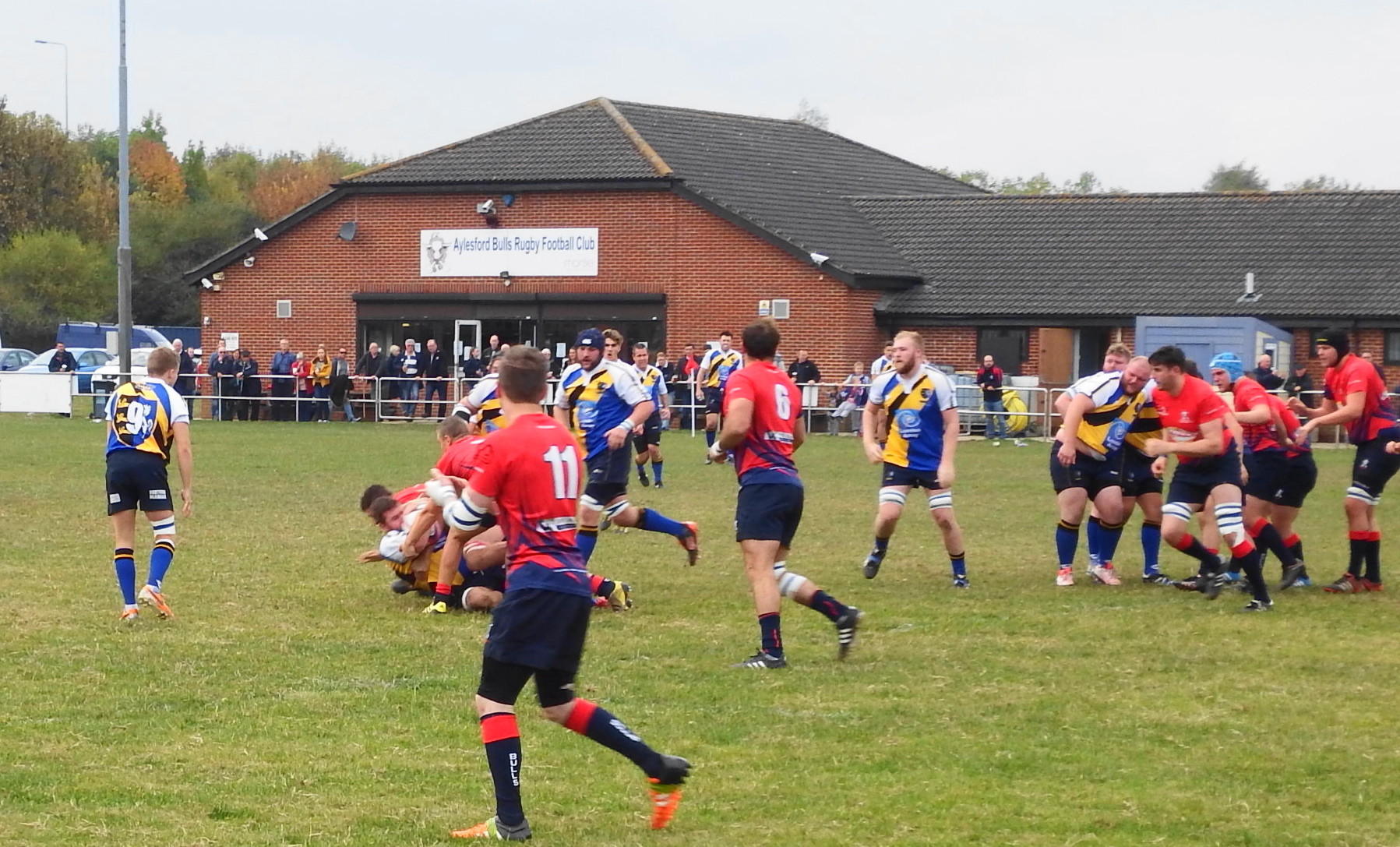 1st XV v Aylesford 29.10.16 Gallery Image - Thanet Wanderers RUFC