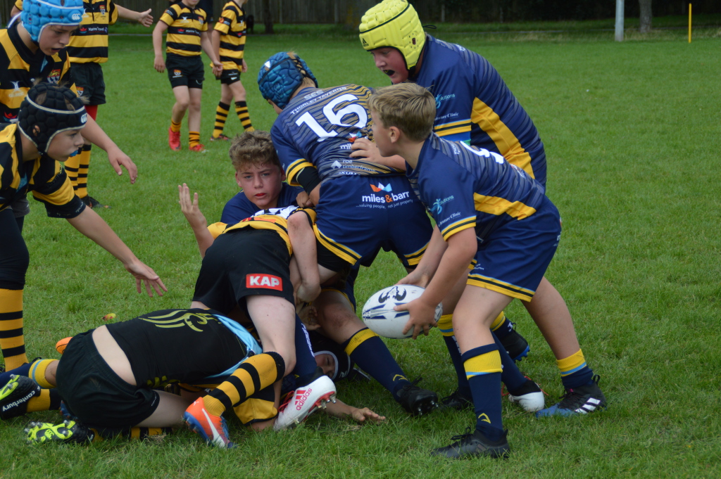 Under 13s Vs Canterbury Gallery Image - Thanet Wanderers RUFC